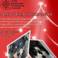 """PAVIA VOGHERA VIGEVANO – L' Ente Nazionale Protezione Animali Onlus invita a sostenere l'Associazione anche a Natale: """"I doni solidali rappresentano un doppio motivo di gioia per chi li riceve..."""