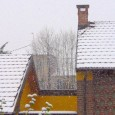 PAVIA VOGHERA VIGEVANO – Puntale come un treno giapponese questa mattina la neve è arrivata ed ha imbiancato anche la Provincia di Pavia. La neve scende nel Capoluogo, in all'Oltrepo,...