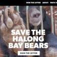 PAVIA VOGHERA VIGEVANO – Con un,ultim'ora Animals Asia comunica che altri 13 orsi sono morti nella fattoria della bile di Cau Trang, nella baia di Halong. Sale così a 18...