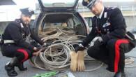 VIGEVANO - A Vigevano i Carabinieri, su disposizione della magistratura,hanno messo agli arresti domiciliari C. C., cl. 1989 di Vigevano, celibe, operaio, pregiudicato, per atti persecutori, ingiuria, percosse, rapina, lesioni...