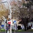printDigg DiggCASTEGGIO – Nella città di Casteggio sono arrivate le nuove telecamere di sorveglianza. Da un paiodi giorni infatti alcuni operai armeggiavano sui pali della rotonda di via Emilia e...