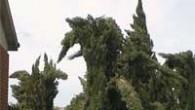 VOGHERA STRADELLA – Il Centro funzionale monitoraggio rischi naturali della Regione Lombardia ha emesso un avviso di criticità moderata per rischio vento forte dalle ore 9 alle 24 di domani,venerdì...