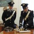 PAVIA – Andava in giro con un coltello. Per questo i Carabinieri di Pavia lo hanno denunciato. E' accaduto all'interno di un parcheggio di via Nazario Sauro. Protagonista è V.Z....