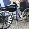 """PAVIA VOGHERA VIGEVANO – Sabato 10 e domenica 11 ottobre in decine di piazze della provincia di Pavia torna la """"Mela di AISM"""" per sostenere la ricerca contro la sclerosi..."""