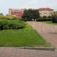 printDigg DiggVOGHERA – I giardini che sorgono in viale Montebello nei pressi dell'Esselunga si confermano, come la non lontana stazione ferroviaria, luogo caldo della città. Nella tarda mattinata di oggi...