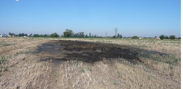 CODEVILLA – Ora non resta che un enorme tappeto nero fumante. Ma prima al suo posto c'erano una trentinadi balle di fieno accatastate. Stiamo parlando di quanto accaduto la notte...