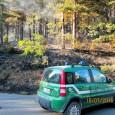 printDigg DiggBRALLO – Una pineta sta bruciando in Alta Valle Staffora. Succede nel comune del Brallo di Pregola dalle 15.30 circa di oggi. La zona colpita si trova a ridosso...