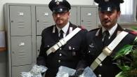 RETORBIDO – Nel pomeriggio di ieri, nell'ambito della campagna di contrasto attuata dal Comando Provinciale di Pavia mirata alla prevenzione dei reati ed alla repressione del fenomeno dello spaccio di...