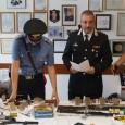 SANTA MARIA DELLA VERSA – Le indagini dei Carabinieri di Vigevano, che nel mese di luglio 2016 avevano disarticolato un'associazione per delinquere finalizzata al traffico di armi e dedita anche...