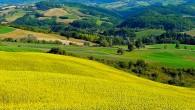 """VOGHERA – Le previsioni del tempo di Marcello Poggi di Pronto meteo sono ottimiste. Fine del gelo e arrivo del bel tempo. """"Sono state giornate difficili per le colture, con..."""