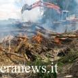 PANCARANA – Pasquetta drammatica al Bosco Arcadia di Pancarana. Un incendio scoppiato nella prima mattina di ieri, pur non avendo impeditoai visitatori di usufruire della struttura,ha portato alla distruzionedi alcune...