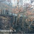 printDigg DiggBRALLO – L'alta valle Staffora sotto attacco dei piromani. Venerdì notte un incendio ha colpito i boschi che sorgono tra Santa Margherita Staffora e Brallo di Pregola. Ieri invece...