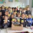 """VOGHERA – Anche nell'anno scolastico in corso, i plessi di scuola primaria del Comprensivo di via Marsala partecipano al programma europeo """"Frutta nelle scuole"""",che da anni propone un colorato e..."""
