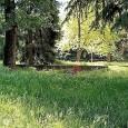 """VOGHERA – Un lettore ci segnala con una lo stato dei Giardini di via Ugo Foscolo angolo via Bellini. Giardini i cui """"giochi per i bambini sono sommersi dall'erba""""."""