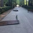 SALICE TERME – Vandali in azione stanotte a Salice Terme. Ignoti sono entrati nel Parco della località termale prendendo di mira le panchine. Molte sono state divelte, spostate e rovesciate....