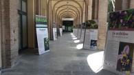 VOGHERA – Anche il Museo di Scienze, come da tradizione, con il patrocinio dell'Assessorato alle Attività museali, porterà il proprio contributo durante i giorni della Fiera dell'Ascensione. Innanzitutto con le...
