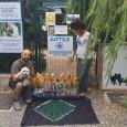 VOGHERA – La sezione vogherese dell'Ente Nazionale Protezione Animali nei giorni scorsi aveva chiesto aiuto ai cittadini per sostenere gli animali accuditi presso il gattile oltrepadano. La Foresta Che Avanza,...