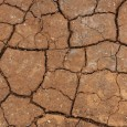 """VOGHERA – Il Meteo di Marcello Poggi dice che il gran caldo prosegue. Sabato ci sarà il picco """"africano"""" ma domenica dovrebbe arrivare un po' di fresco. Ecco le previsioni...."""