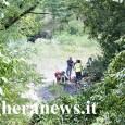 VOGHERA – Non ce l'ha fatta l'uomo che oggiintorno alle 12, lungo uno dei tanti sentieri che conducono allo Staffora, era stato trovato gravemente ustionato. L'uomo, un 90enne residente in...