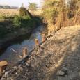 printDigg DiggVOGHERA - E' appena terminata la prima parte di lavori di consolidamento delle sponde dei corsi idraulici del Cavo Lagozzo. Un intervento da 50mila euro è stato compiuto a...