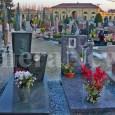 printDigg DiggVOGHERA – La lega anti vivisezione dell'Oltrepò Pavese risponde all'assessore Giuseppe Carbone che, sulla proposta di consentire l'ingresso ai cani nei cimiteri, aveva detto sì ma solo all'interno di...