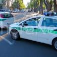 VOGHERA – E' caccia in città al pirata della strada. La polizia locale di Voghera è alla ricerca dell'automobilista che lunedì pomeriggio, 6 novembre, ha investito un pendone e poi...