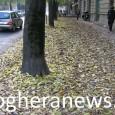 """VOGHERA – Prosegue il monitoraggio dei """"Quartieri da parte dell'Italia del Rispetto. """"Il referente del progetto """"Quartieri Voghera 2020"""" – spiega il movimento – Davide Brambilla è stato contattato da..."""