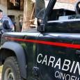 MIRADOLO – Questa mattina intorno alle 7, a Miradolo Terme, un 80enne proprietario di un allevamento di cavalli avrebbe colpito con un fucile da caccia, verosimilmente per dissidi di natura...