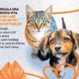 VOGHERA – Vivere con un animale domestico non deve più essere considerato un lusso: sarà questo il tema delle giornate nazionali LAV del 10 e 11 marzo, con replica il...