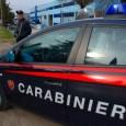 PAVIA – In mattinata i carabinieri di Pavia hanno dato esecuzione a 5 custodie cautelari nei confronti di altrettanti cittadini albanesi accusati di traffico di sostanze stupefacenti nelle province di...