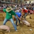 """PAVIA - In occasione della 54esima """"Sagra dell'asparago"""" che si terrà nel comune di Cilavegna (PV) dall'11 al 13 maggio 2018, è previsto lo svolgimento della manifestazione denominata """"palio dei..."""