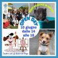 printDigg DiggVOGHERA – Il rifugio Enpa di Voghera, in occasione della Giornata dei Rifugi aperti, oggi effettuerà un'apertura straordinaria. Il cani-gattile (o gatti-canile… ma c'è anche un maiale salvato dal...