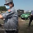 PAVIA – Sono in corso, dalle prime ore della mattinata odierna, le operazioni condotte dai Carabinieri Forestali dei Gruppi di Milano e Pavia, con il supporto dei Comandi Provinciali dei...