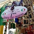 """printDigg DiggSALICE TERME:L'attesa è finita! Domenica 2 settembre torna a grande richiesta, a Godiasco Salice Terme,l'eccellenza dell'unico vero ed originale mercato di qualità de """"Gli Ambulanti di Forte dei Marmi"""".In..."""