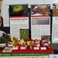 VOGHERA – Ci sarà anche il museo di Scienze naturali di Voghera da sabato 27 a lunedì 29 ottobre a Golosaria (Milano Congressi) con uno stand interamente dedicato al progetto:...