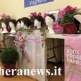"""VOGHERA – L'Asst di Pavia, questa mattina nella sala del Circolo Ricreativo Aziendale dei Lavoratori dell'Ospedale Civile di Voghera, ha presentato """"Una parrucca per le donne in chemioterapia"""", progetto dedicato..."""