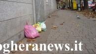 VOGHERA – Il nuovo sistema di raccolta differenziata dei rifiuti con cassonetti dotat di badge elettronico, arriva anche nel Quartiere Centro, a completare così tutto il servizio nel territorio comunale...