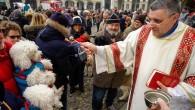 VOGHERA – Si terra oggi pomeriggio la tradizionale cerimonia della benedizione degli animali. Il rito a differenza degli anni scorsi però non si terrà in piazza Duomo ma in piazza...