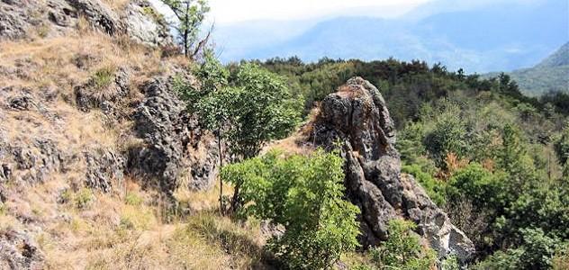 ROMAGNESE BRALLO – Monte Lesima e Pietra Corva sono stati dichiarati, per la loro biodiversità, patrimonio europeo. La Decisione è stata pubblicata sulla Gazzetta Ufficiale n.7 della UE il 9...