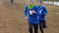 VOGHERA – A febbraio alla Canottieri Ticino è iniziata la stagione di cross per la provincia di Pavia ed un gruppetto di giovani atleti dell'Iriense vi ha partecipato correndo nel...