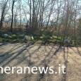 printDigg DiggVOGHERAPAVIA e PROVINCIA – Diverse strade della provincia di Pavia si stanno lentamente trasformando in sostanziali discariche. È da diversi mesi infatti (circa un anno), che per alcuni è...