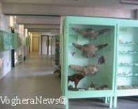 VOGHERA 27/10/2014: Prosegue la collaborazione fra il Museo di Scienze Naturali e il Carcere