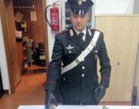 GIUSSAGO CURA CARPIGNANO 13/11/2014: Hashish nei boschi di Carpignago. Incendio alla Stem s.r.l.
