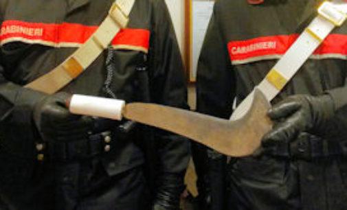 PAVIA 20/11/2014: 14enne girava con una grossa roncola nello zaino. Fermato dai carabinieri