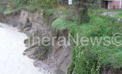 PAVIA VOGHERA 12/11/2014: Maltempo. Avanza l'erosione sulla sponde della Staffora (Le FOTO). Chiuso il ponte di barche a Bereguardo. A rischio allagamenti le zona fra Voghera e Tortona