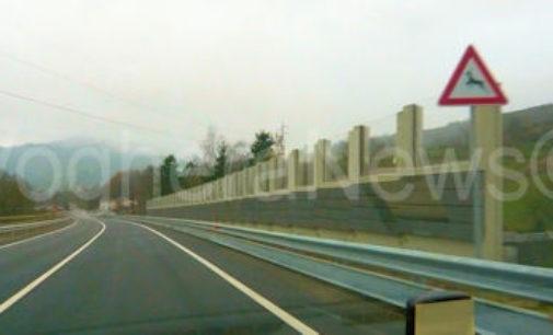 VARZI 08/12/2014: Aperto a Bagnaria un tratto della varante sulla Sp461 per Varzi e il Penice. E' una goccia nel mare ma è un segnale positivo. Polemica invece fra Ponte Nizza e Assoconsumatori sui semafori per rallentare le auto