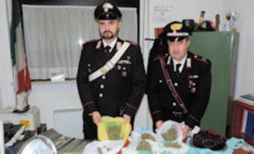 """CASSOLNOVO 12/12/2014: Uomo con i seni. """"Sono trans!"""". Invece nascondeva droga. 2 Carabinieri restano feriti durate il fermo"""