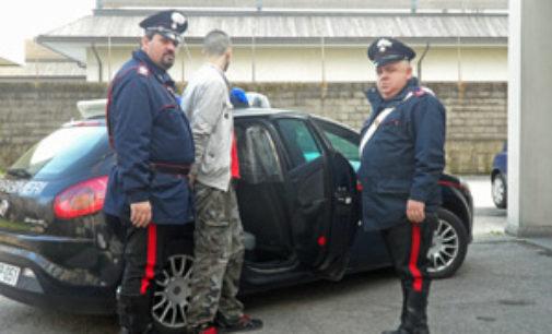 VIGEVANO 31/12/2014: Ladri acrobati presi da carabiniere acrobata. Rubavano le bottiglie per il cenone di fine anno