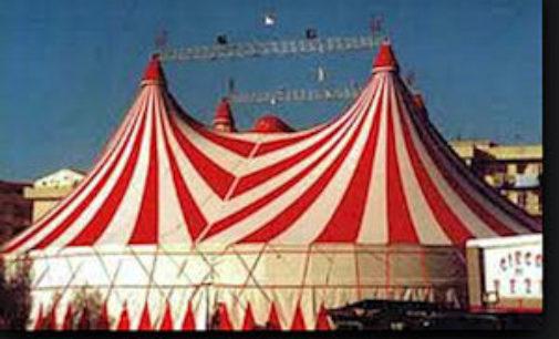 BRESSANA 13/03/2015: L'Enpa invita ad una mail bombing contro il Comune che ospita il Circo