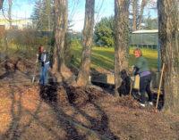 RETORBIDO SALICE 31/03/2015: Volontari al lavoro per pulire le zone verdi. In campo la protezione civile, operatori turistici e cittadini